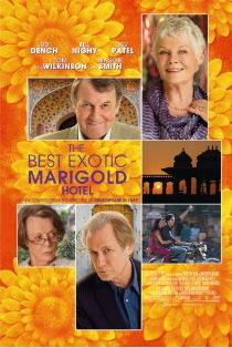 Best Exotic Marigold